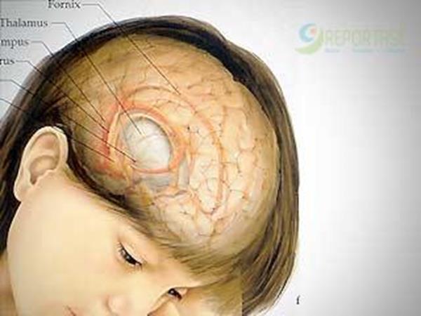 Smartphone Hancurkan Otak Anak Anda