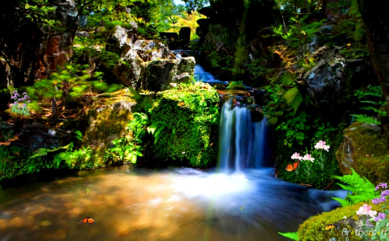 Download Free Just Paradise Animated Wallpaper Just Paradise