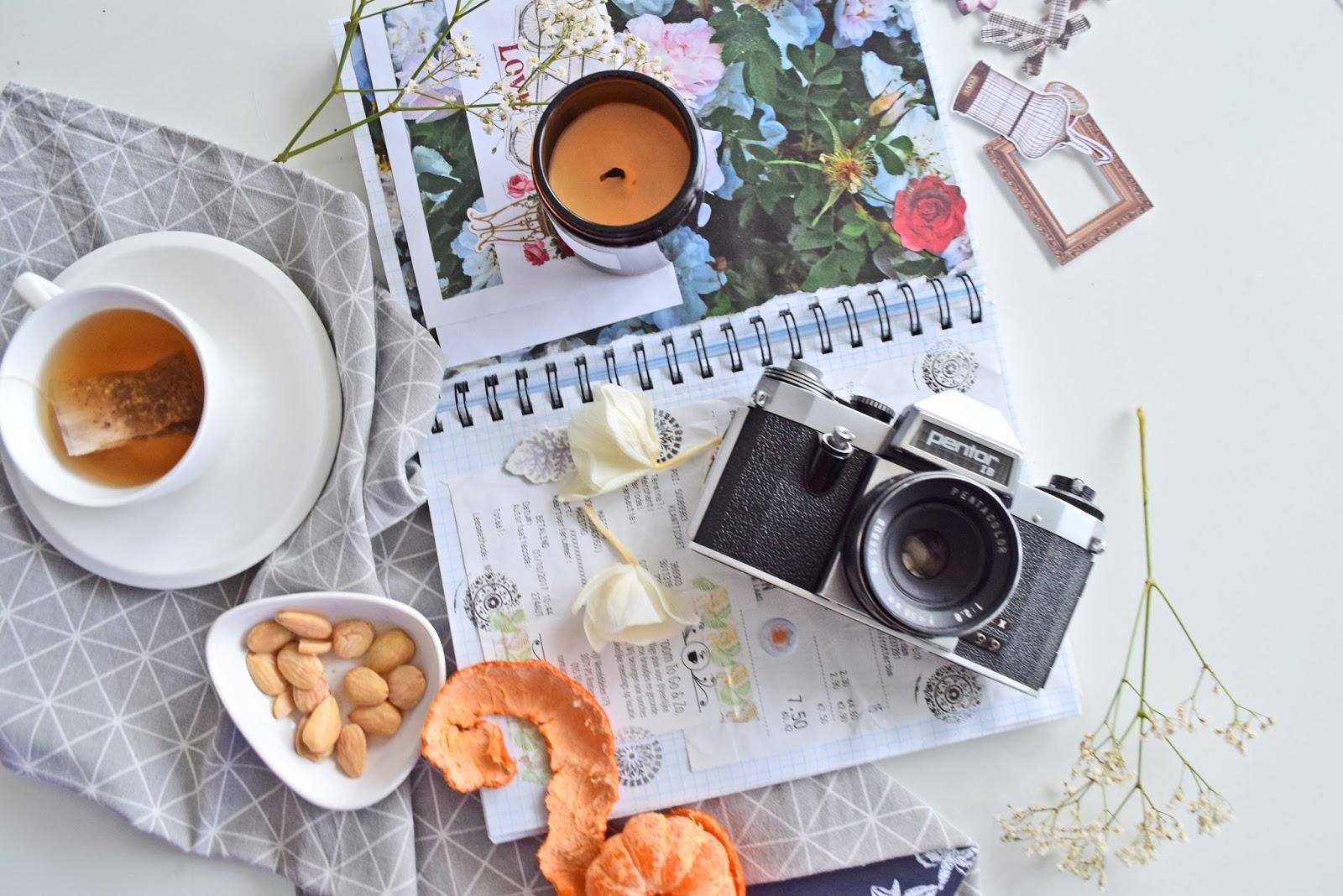 pamiętnik o podróżach