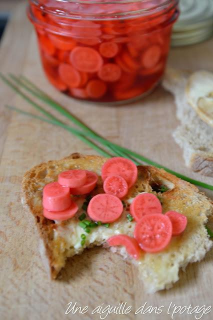 Pickles de légumes au vinaigre/ radis