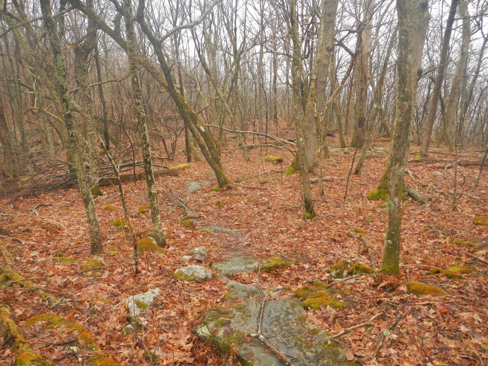 Wandering Virginia: The Appalachian Trail over the New River