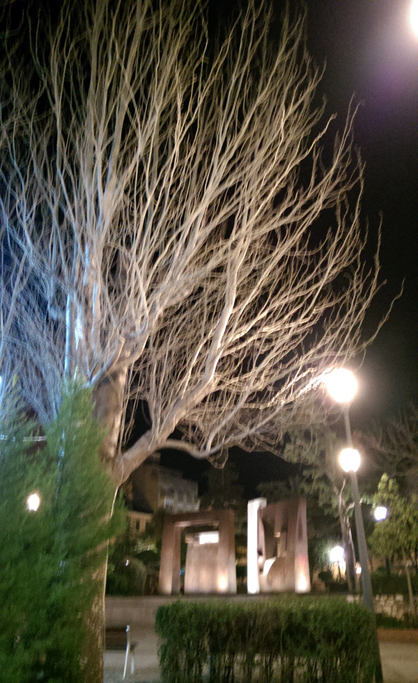 Yecla, parque. Dic. 2016