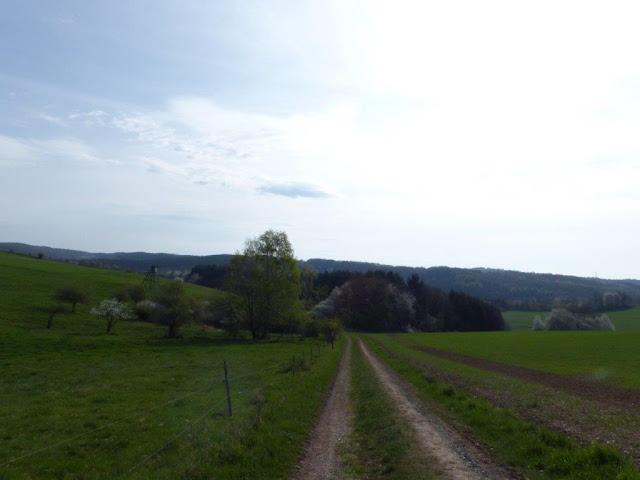 Hunsrück Urlaub Wanderurlaub mit Hund Ostern Traumschleifen Saar-Hunsrück-Steig Kupfer-Jaspis-Pfad
