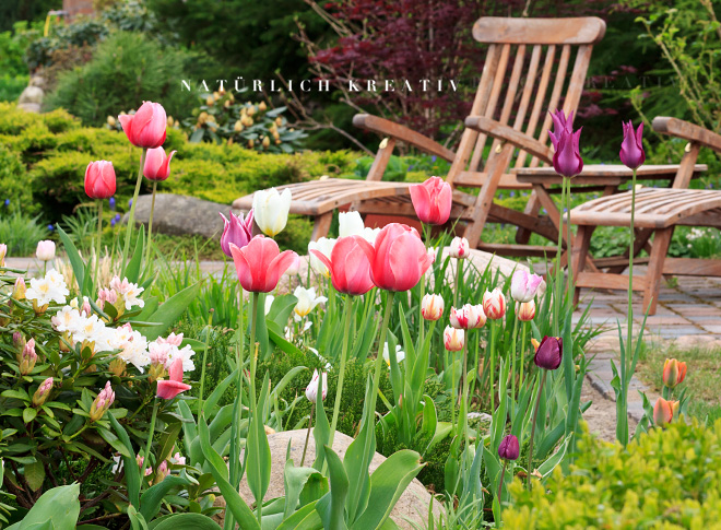natuerlichkreativ tulpen tulpen tulpen. Black Bedroom Furniture Sets. Home Design Ideas