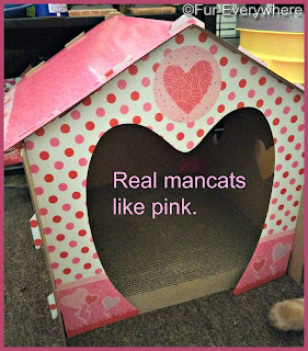 Valentine's Day cat scratcher house.