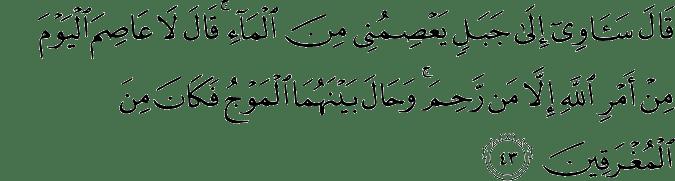 Surat Hud Ayat 43