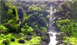 vinhaqua.com - Hồ thủy sinh trọn bộ - Suối thác 2