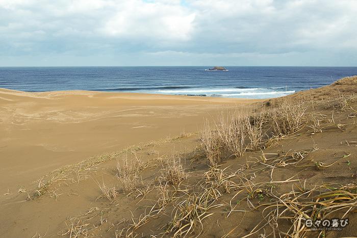 dunes, végétation et mer au loin