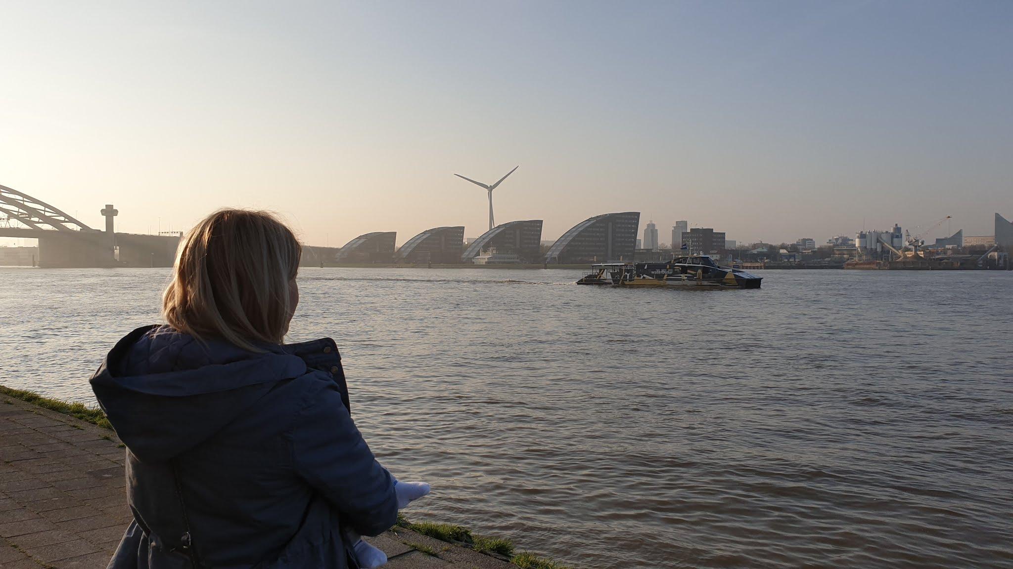 Polka w Rotterdamie