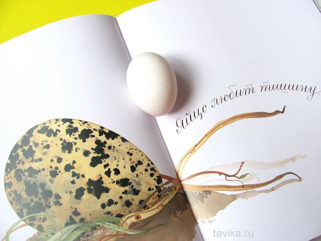 Яйцо любит тишину. Развивающее занятие по книге