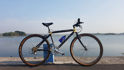 Miyata Century, The most rare bicycle with gold carbon frame