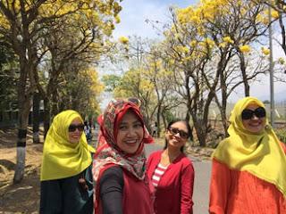 Yuntyas dkk Menikmati Keindahan Pohon Sakura Di Jalanan Desa Pendem, Kota Batu