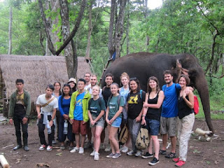 One of our elephant tours