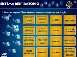 Software Educativo Sistema Respiratório