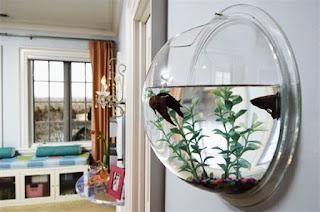 Ornamental Fish Aquarium Design For minimalist