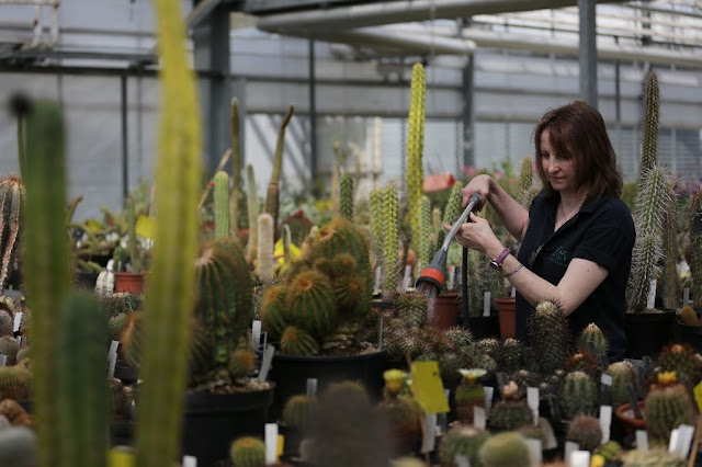 Kew report urges global scientific community to secure health of the planet