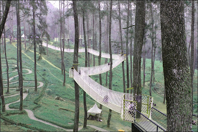 Jembatan gantung 150 meter di Orchid Forest Cikole