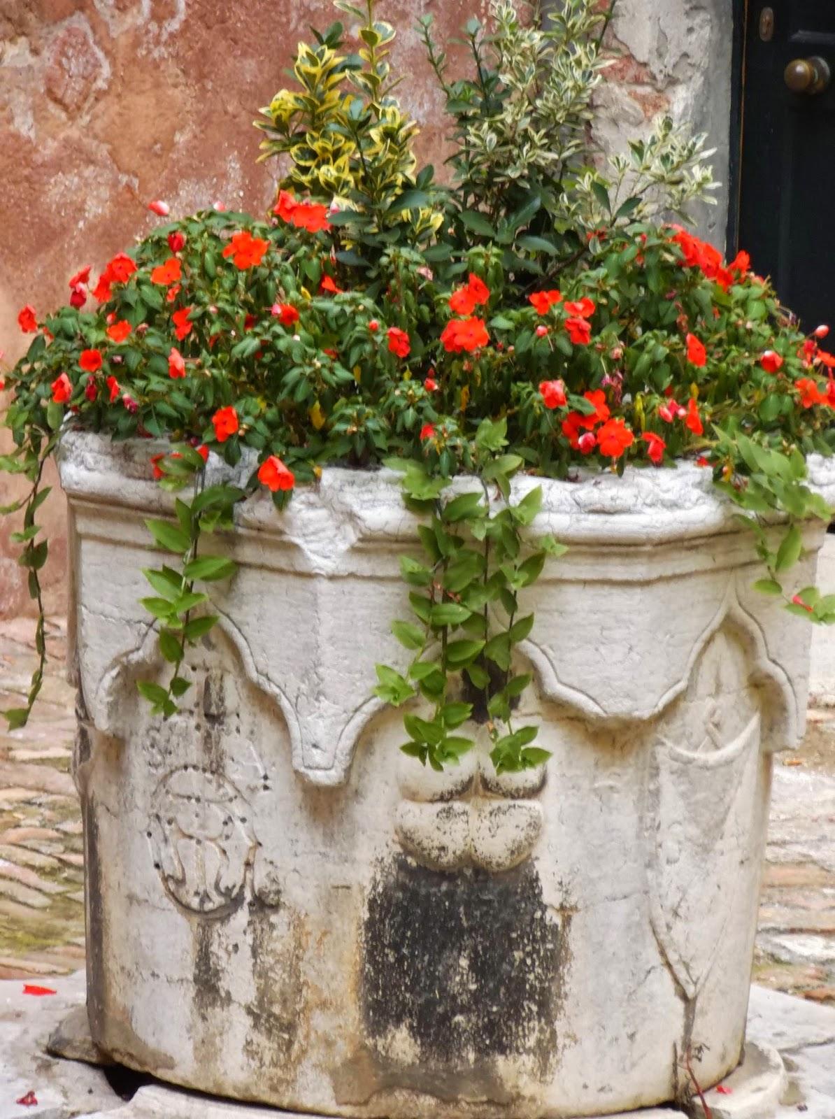Vera da Pozzo, Corte S. Andrea, Venice