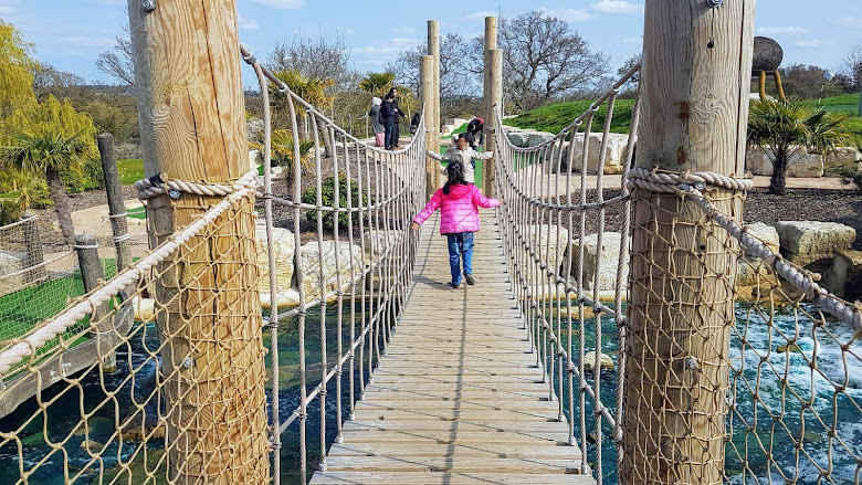 球道內的聯通吊橋