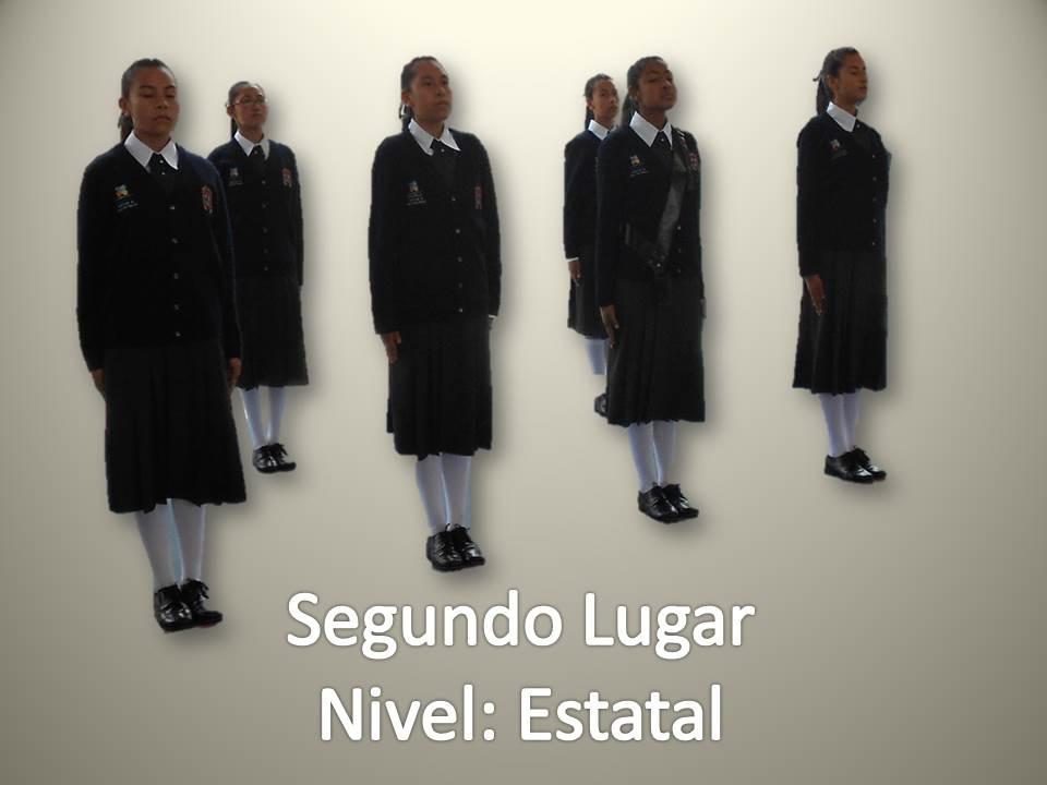 ESCOLTAS Y GUARDAESPALDAS: SEGURIDAD DE