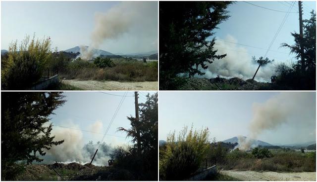 Φωτιά στη Νέα Σελεύκεια Ηγουμενίτσας (+ΦΩΤΟ)
