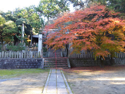 【大阪府四條畷市】御机神社(みつくえじんじゃ)の紅葉