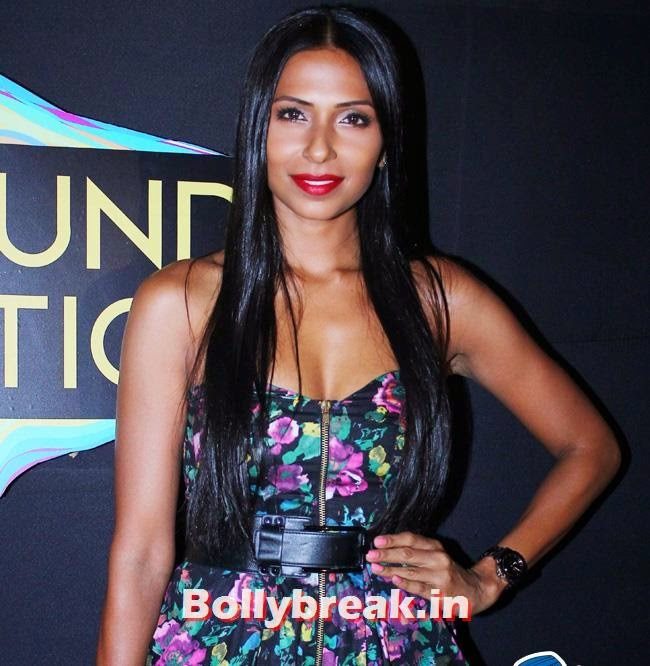 Pooja Misra, Pooja Misra, Carol Gracias at Indian Premiere Music Awards 2014