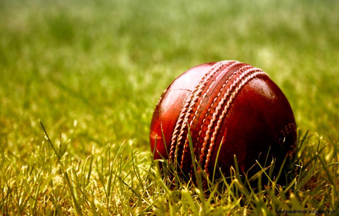 Cricket Hd Wallpapers