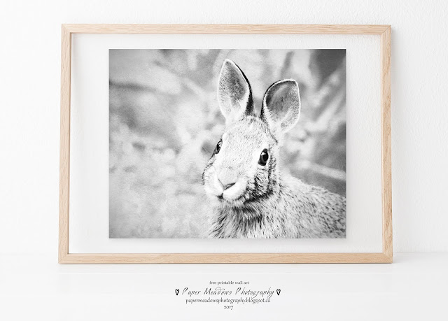 Paper Meadows Photography Blog-Free Printable Nursery Wall Art-Black and white rabbit