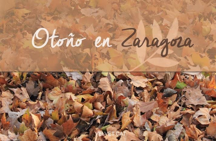 Otoño en Zaragoza fotos
