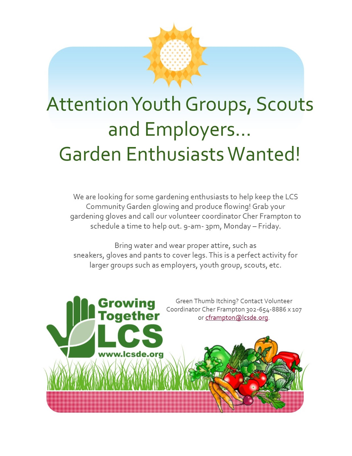 LCS Volunteers