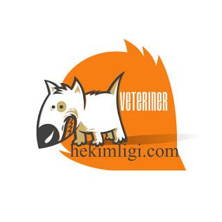 Veteriner-Dikiş-Videoları