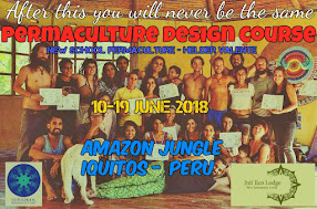 Permaculture Design Course in the Amazon