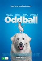 Oddball 2015 480p HDRip English Full Movie Download