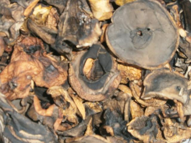 Сушеные подосиновики из Мозолово от Пеха