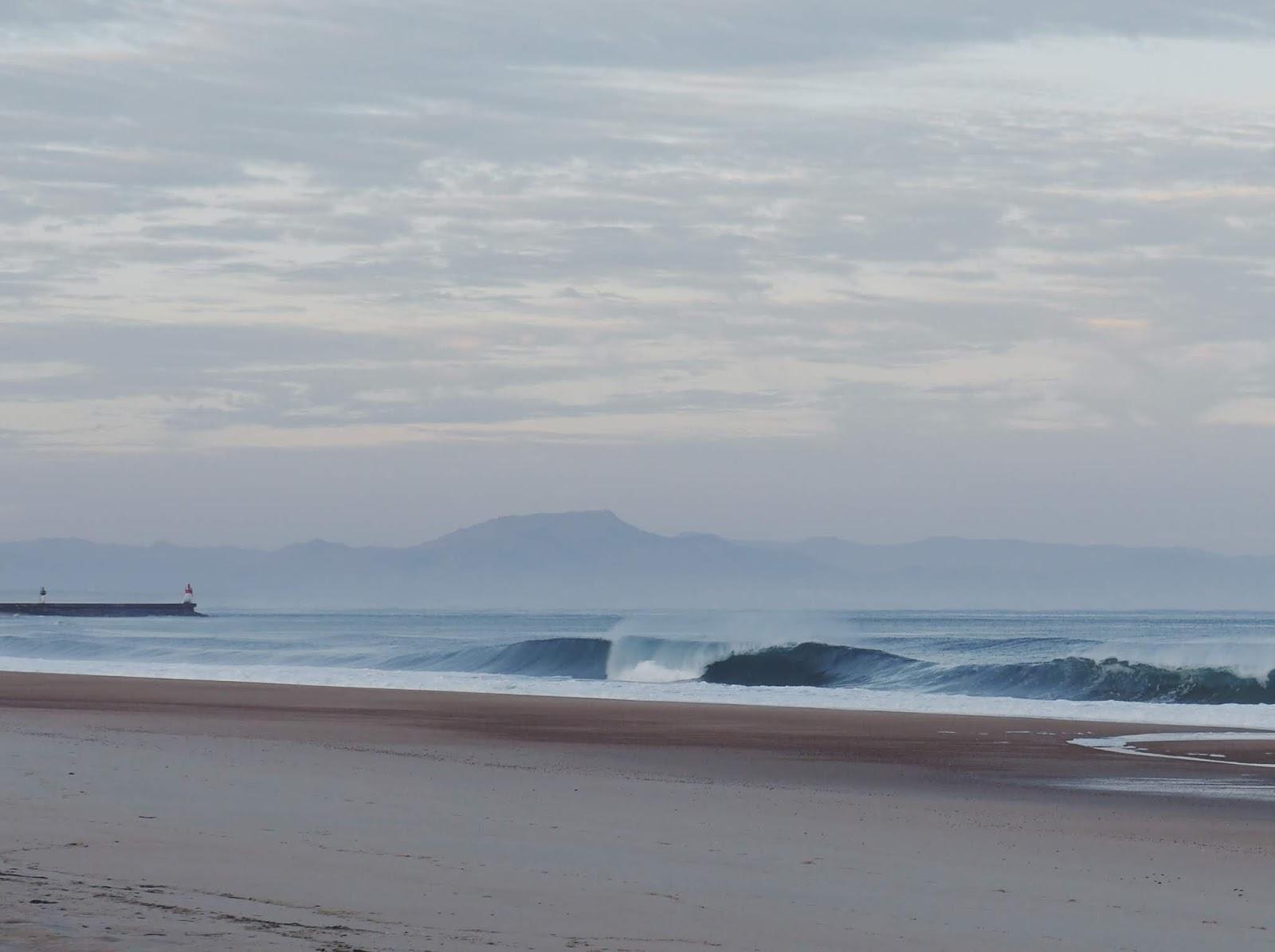 The waves in les Landes - Surfin Estate