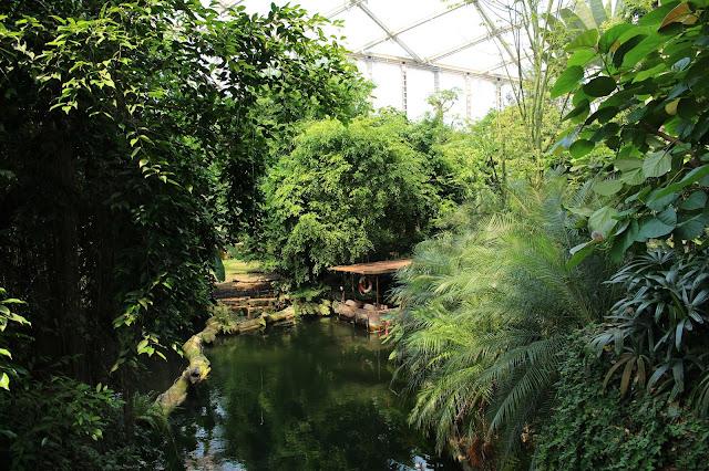 Zoo Leipzig Tropenhaus Gondwanaland