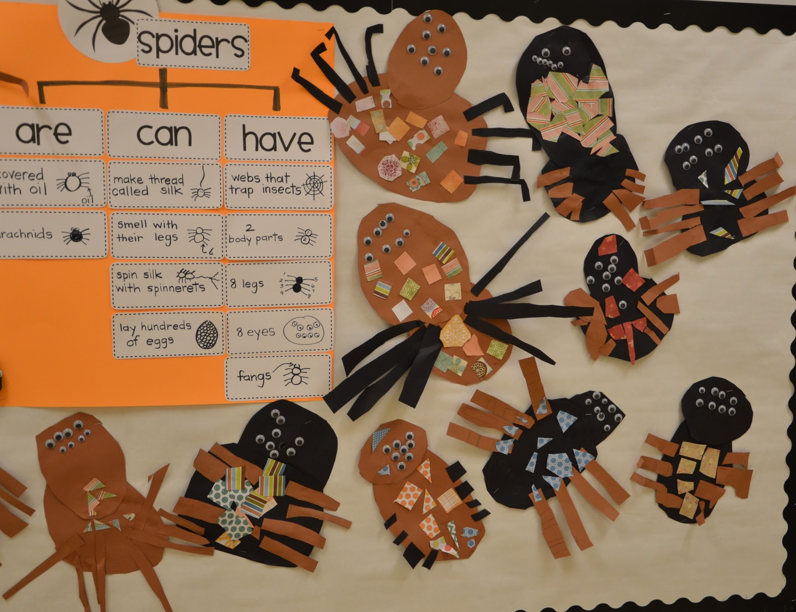 A Place Called Kindergarten Spider Research
