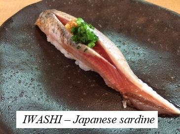 iwashi or Japanese sardines