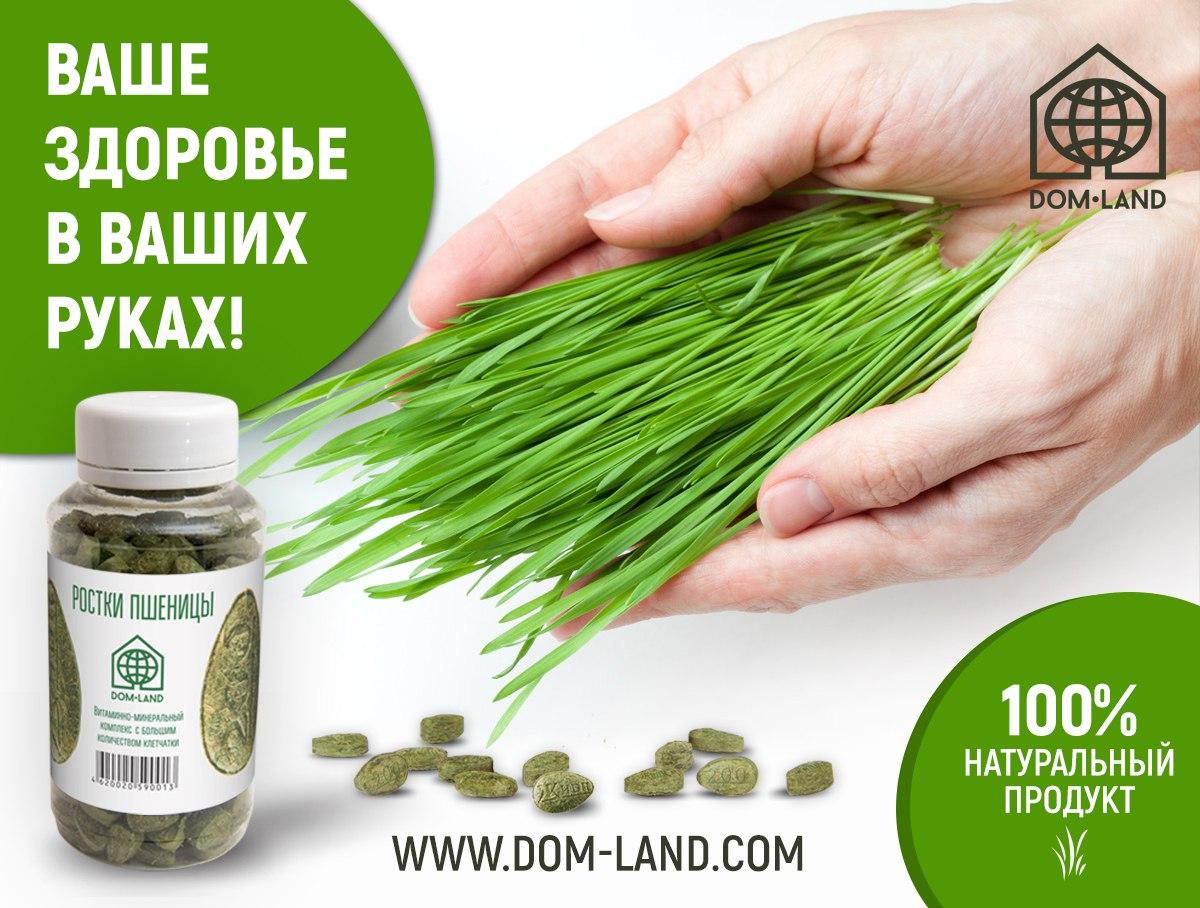 Станьте партнером компании Dom-Land!