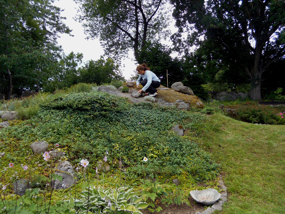 Io in giardino alla ricerca di sassi, 5 agosto 2016
