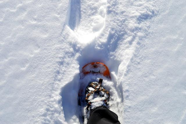 ciaspole quali scegliere: tubbs flex alp