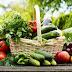 Các món ăn giảm cân rất cho sức khỏe