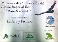 http://www.aguilaimperial.org/