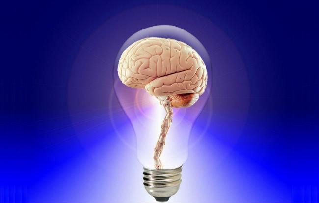 Un cervello con più memoria