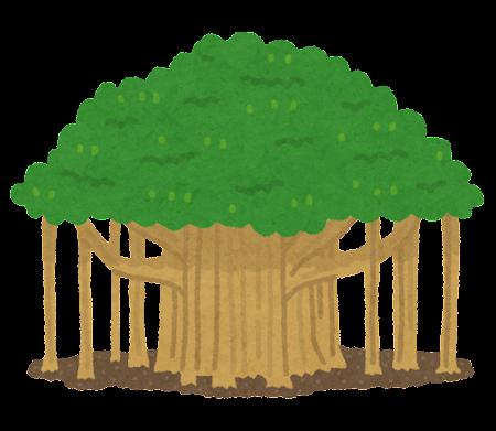 バニヤンツリーのイラスト