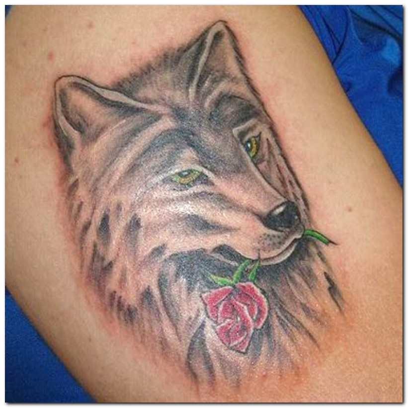 Andriaj89: Wolf Tattoos Tribal Meanings