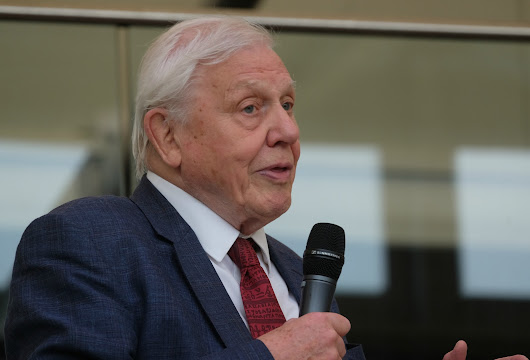 David Attenborough Officially Opens the ABA Rare Book Fair, Battersea, London