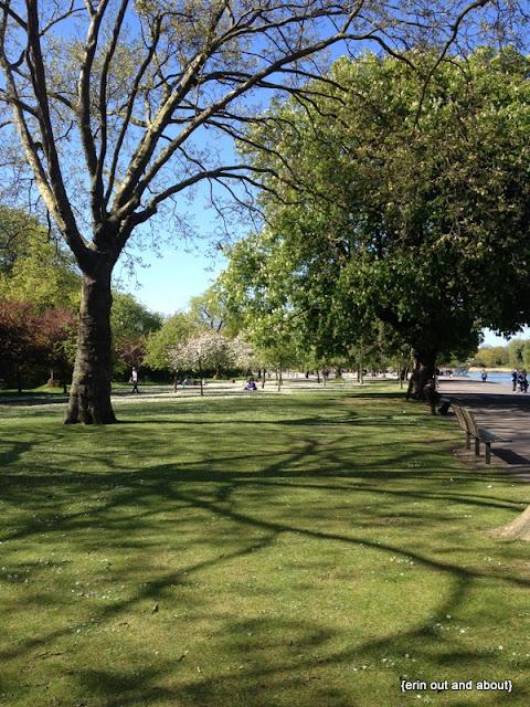 Visit a Park