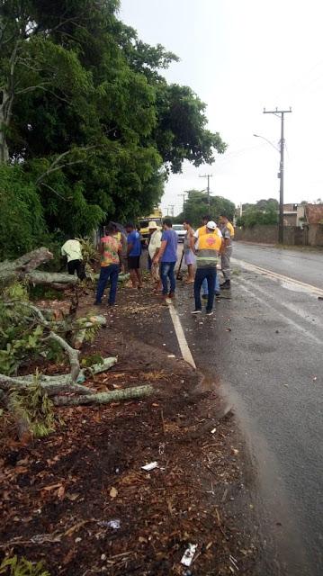 http://vnoticia.com.br/noticia/3456-fortes-chuvas-provocam-queda-de-arvore-na-rj-196-em-barrinha